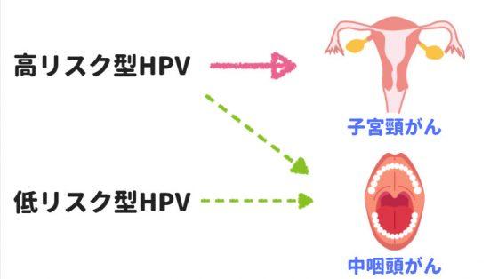 HPVによる腫瘍発生