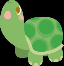 亀頭のイメージ
